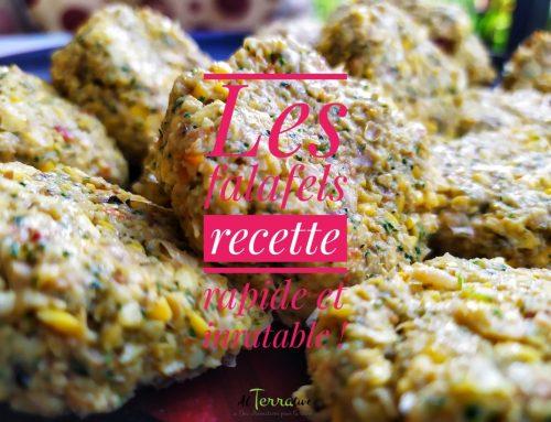 La recette des falafels, rapide et inratable !